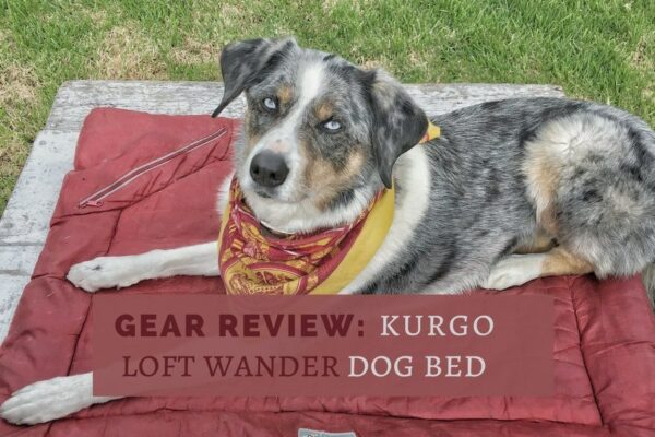 Gear Review: Kurgo Loft Wander Dog Bed. This travel dog bed is an essential part of our camping dog gear. | Long Haul Trekkers
