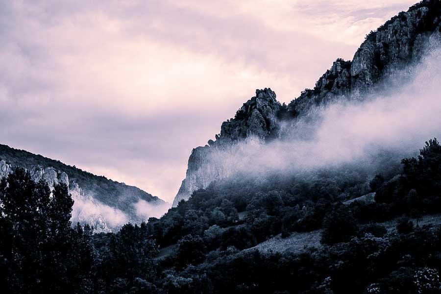 Mountain_Mist_Kluj-1