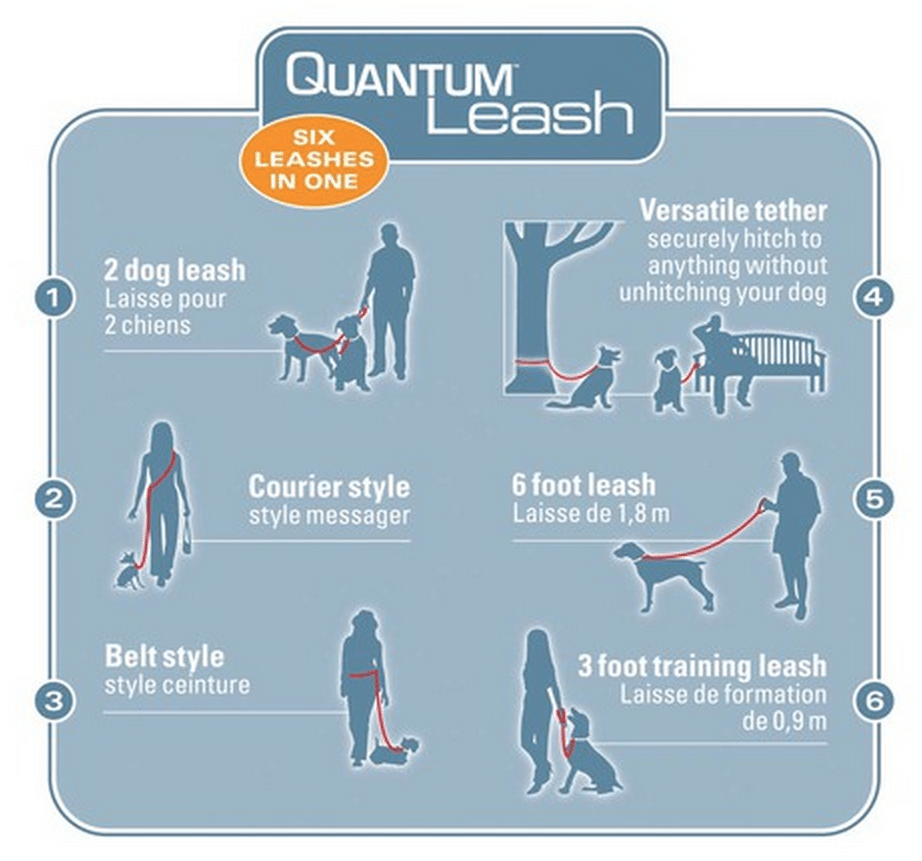 Quantum Leash