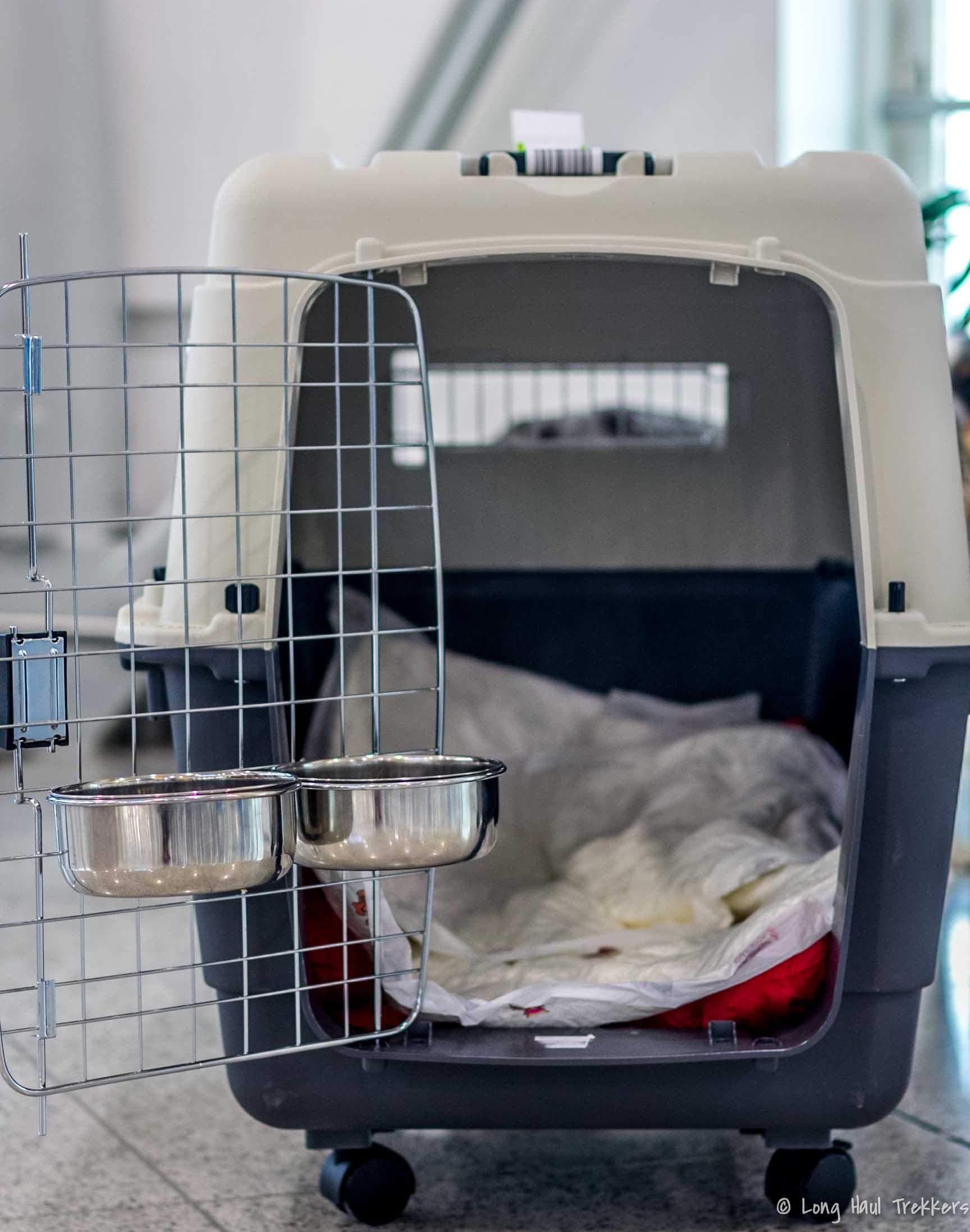How to fly internationally with a dog | Long Haul Trekkers #nodogleftbehind #bringfido