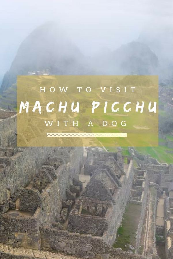 How to Visit Machu Picchu with a Dog | Dog-Friendly Hike | Hiking with Dogs | Long Haul Trekkers