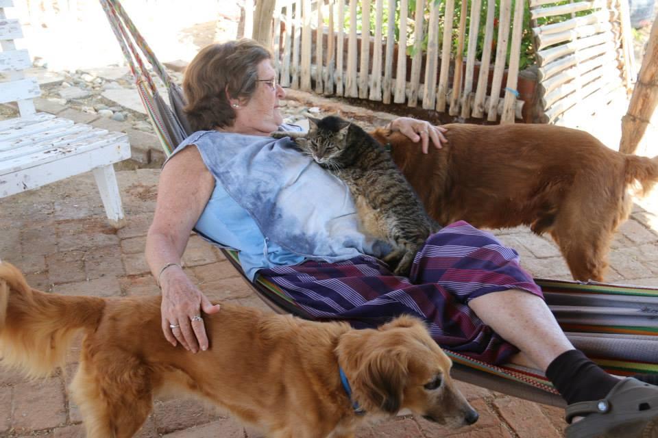 Rosemary Gordon: The Woman Who Saves the Animals | Long Haul Trekkers #animalrescue