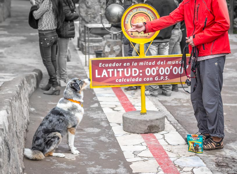 Sora catches a treat across hemispheres. Dog-Friendly Quito: La Mitad del Mundo | Long Haul Trekkers