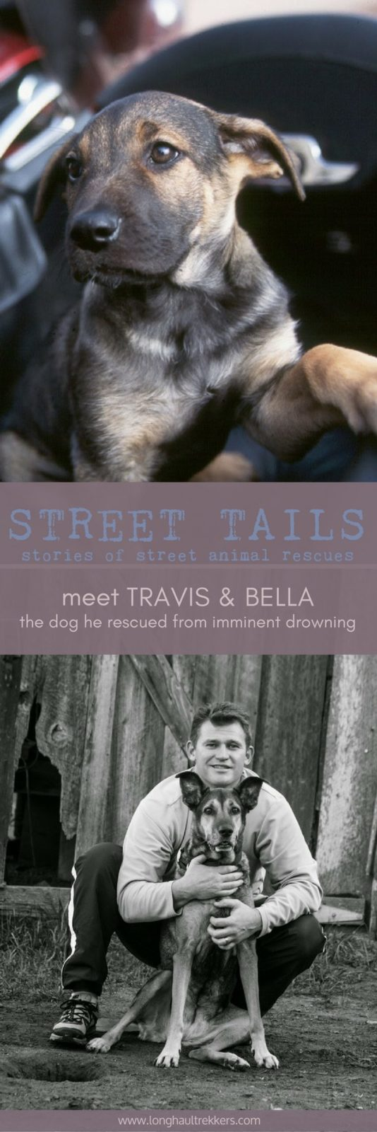 Street Tails: Travis and Bella | Long Haul Trekkers