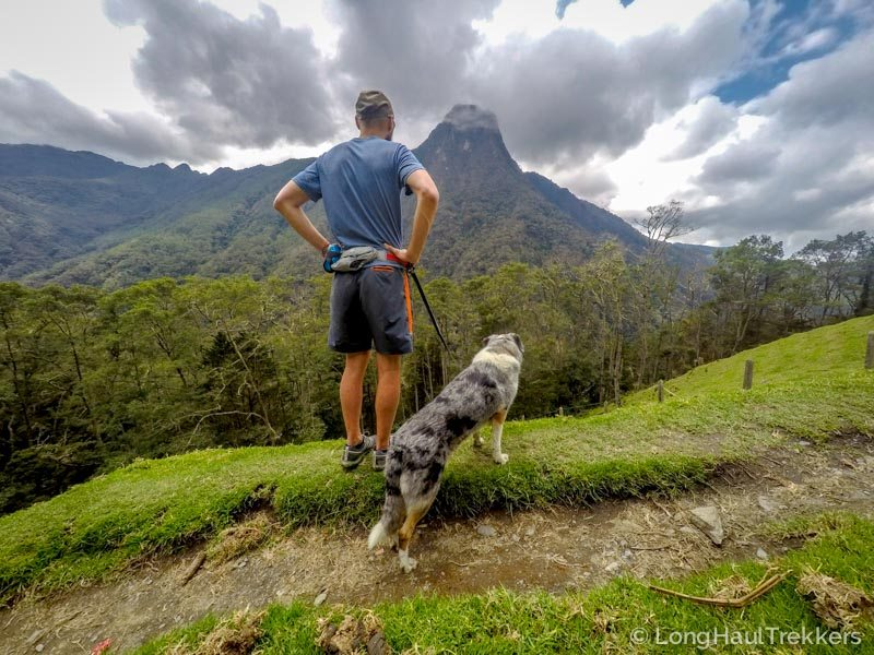 5 Things to Do in Salento, Colombia   Long Haul Trekkers