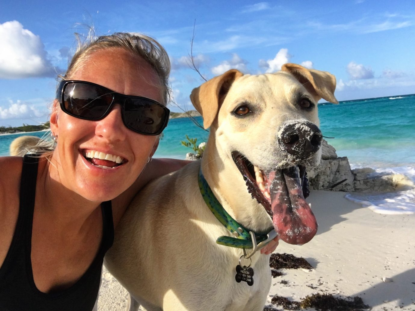 """Street Tails: Barley, Jackson, and Finley. Stories of rescue animals from around the world. This interview features three rescues, including two """"potcakes"""" from the Bahamas.   Long Haul Trekkers"""