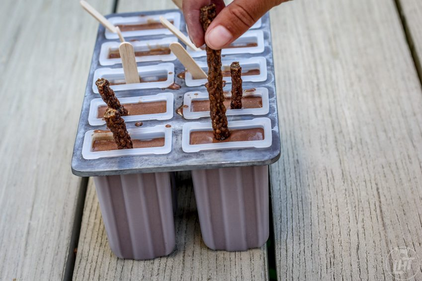 Pupsicle Recipe: Carob Fudgesicles for Dogs