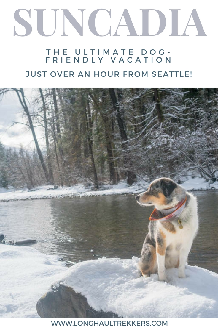 Suncadia Resort: The Ultimate Pet-Friendly Vacation Rental in Central Washington, located just over an hour from downtown Seattle! | Long Haul Trekkers