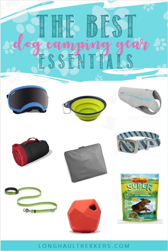 These tested and well-loved items are the best dog camping gear essentials to bring along on your next camping trip with your furry friend.