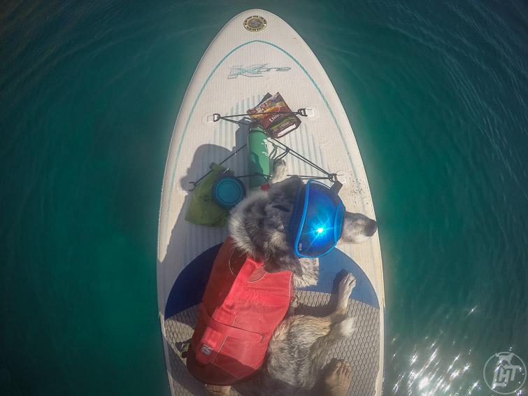 Sora wearing Rex Specs paddle boarding