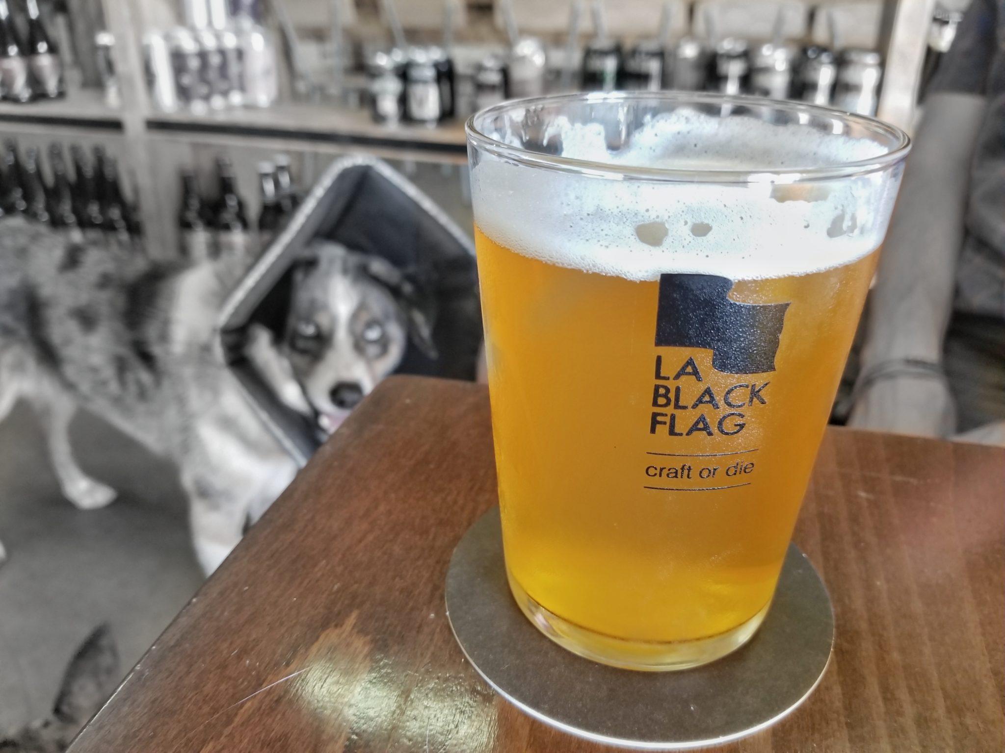 Visit La Black Flag, a dog-friendly brewery in Girona, Spain.