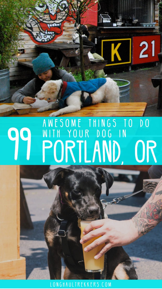 99 awesome things to do with your dog in Portland, OR. From breweries to restaurants, parks and events, this dog-friendly city has no shortage of year-round activities that allow dogs.