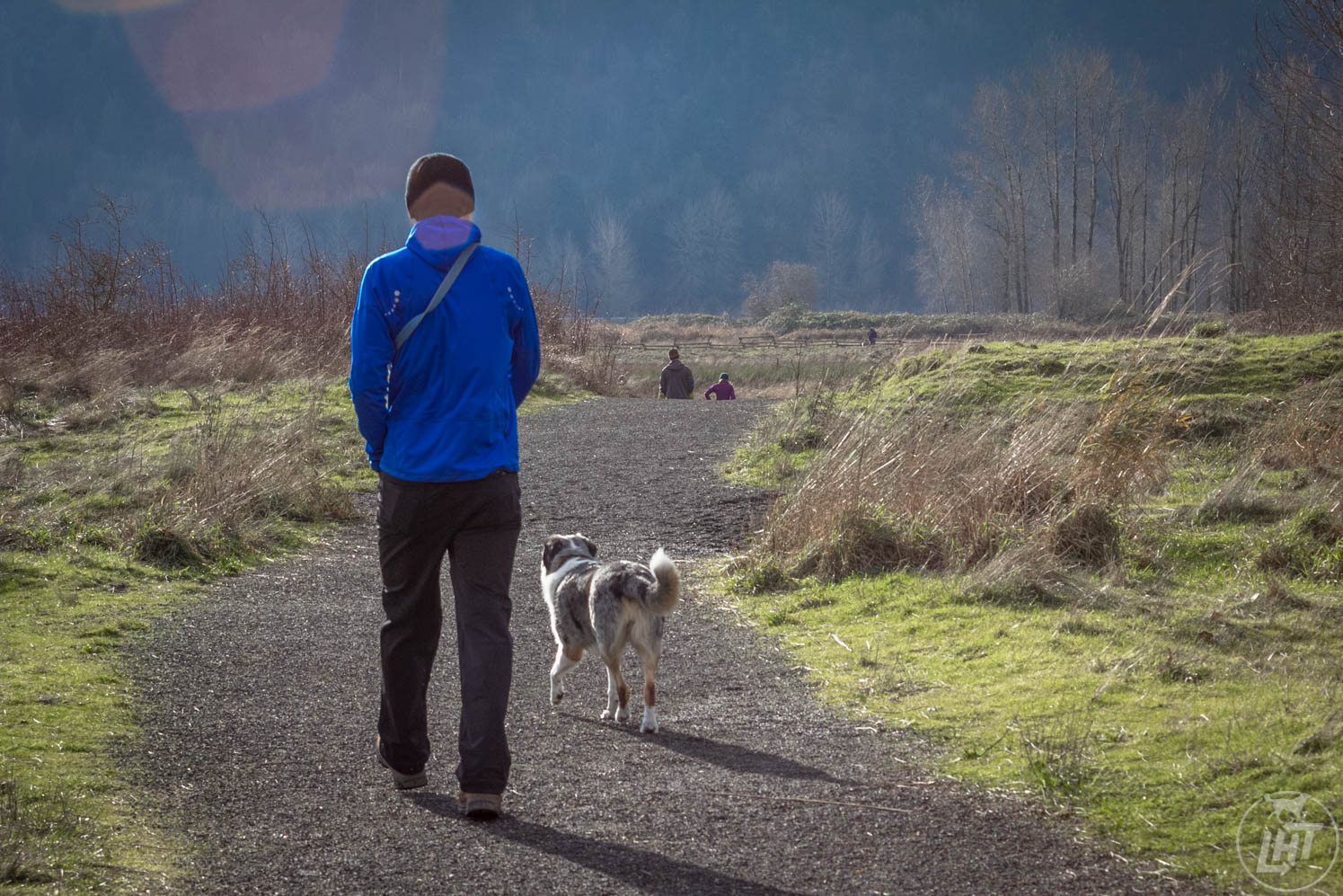 Thousand Acres is one of the best off-leash dog parks in the country.