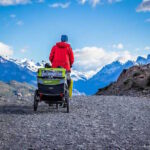 The Burley D-Lite Dog Bike Trailer in Chile.