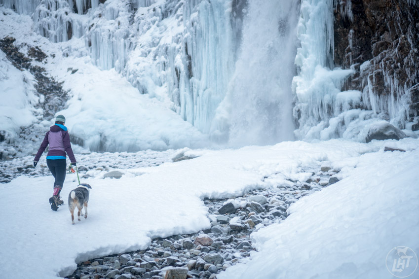 Need ideas for getting outside with your dog? The 52-day adventure dog challenge will get you outdoors for an entire year. Go in search of snow!