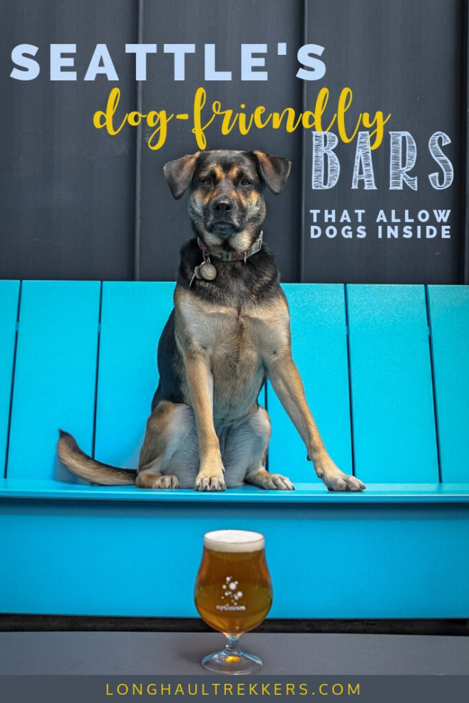 This guide tells you which dog friendly bars of Seattle allow dogs inside as well as outside.