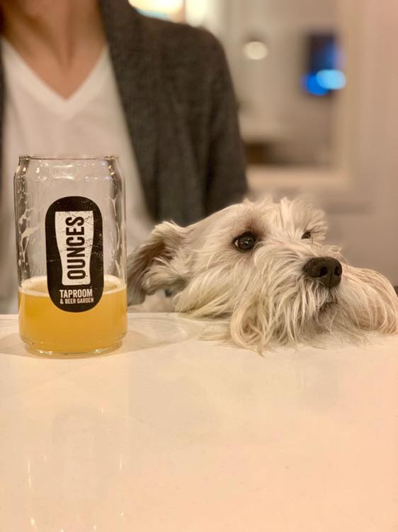 Ounces Taproom is one of the many dog friendly bars of Seattle that allows dogs inside.