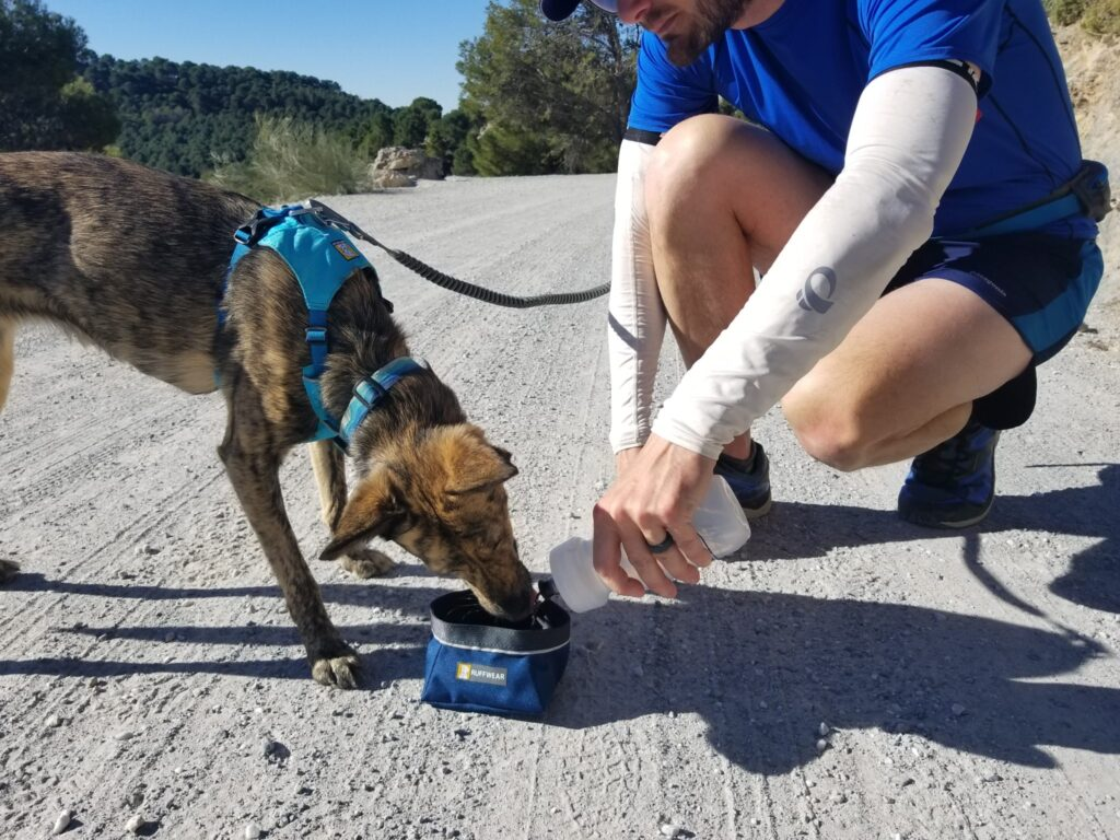 For runs on hot days or over long distances, make sure you bring enough water for you and your pup.