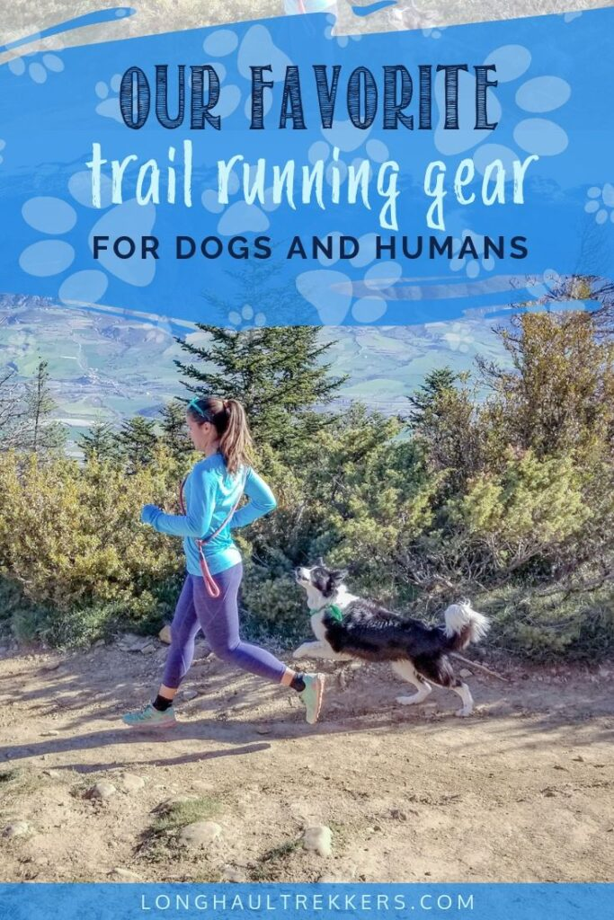 Trail Running Gear for Dogs and Humans Pinterest Image
