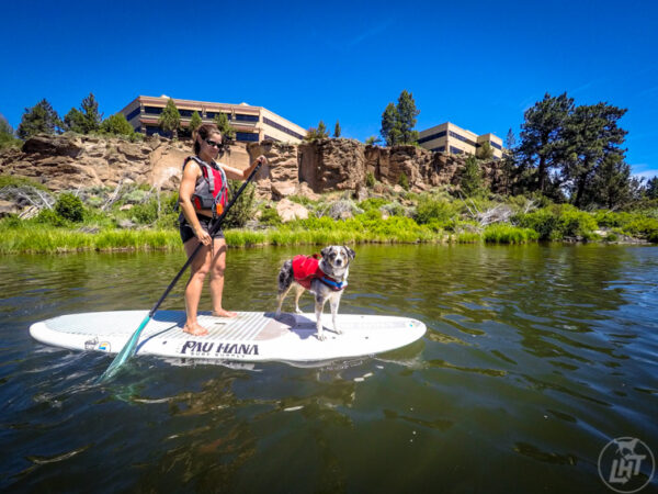 Paddle Boarding with a dog on the Deschutes River in Bend.