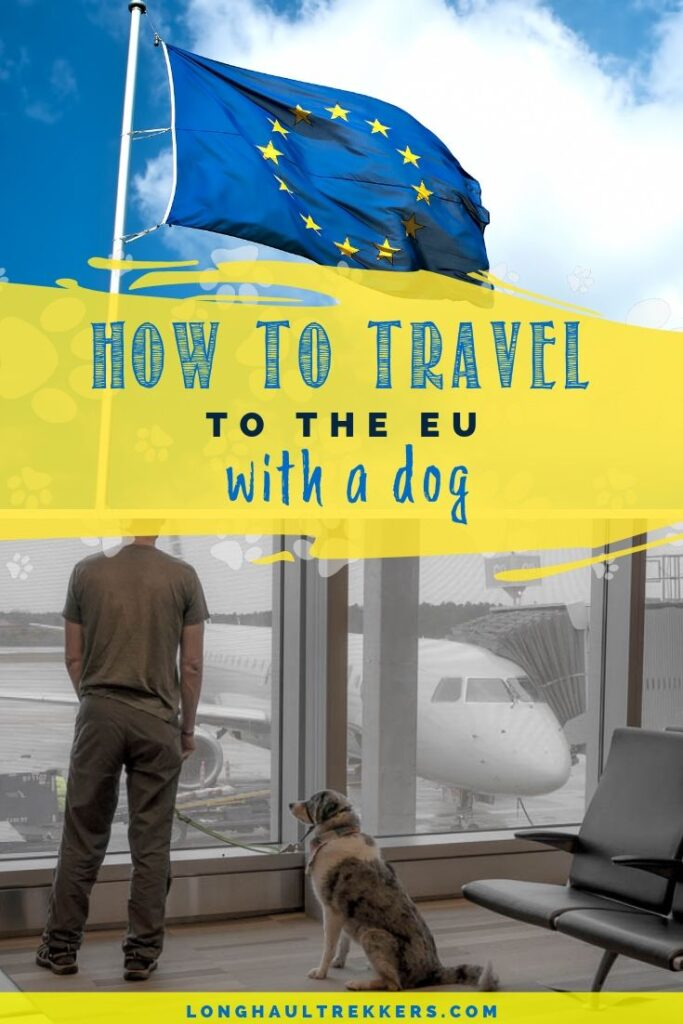 Pinterest Image for Traveling with a dog to Europe