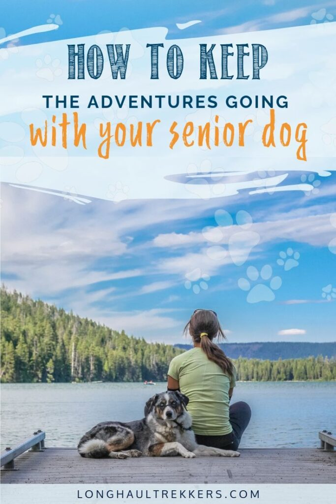 How to Keep the Adventures Going with Your Senior Dog Pinterest Image