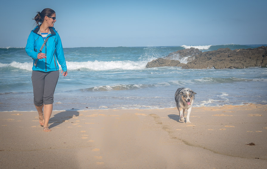 Beach vacations are perfect for senior dogs