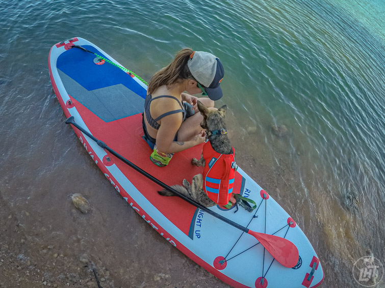 Paddle boarding with a dog.