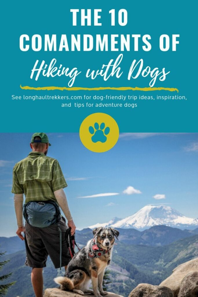 10 Commandments of Hiking with Dogs Pinterest Image