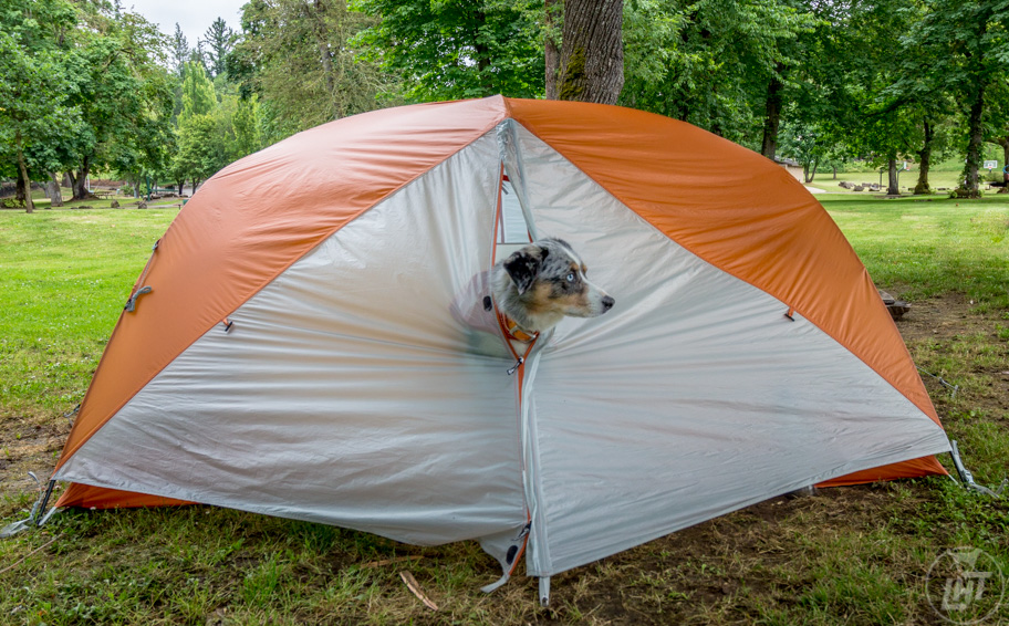 If you can't find hotels that allow pets, then camping is almost always a great pet-friendly option.
