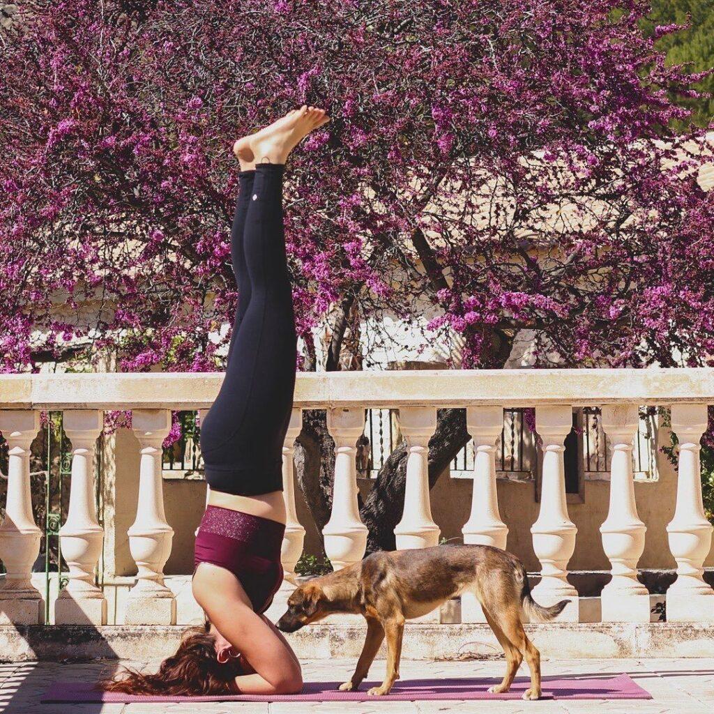 Yoga retreats at Finca les Coves
