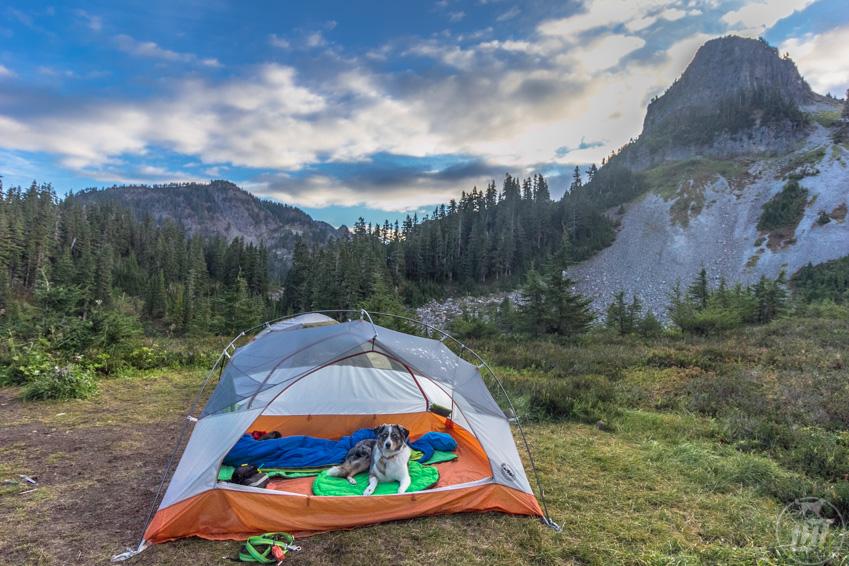 Ruffwear Highlands Dog Camping Bed