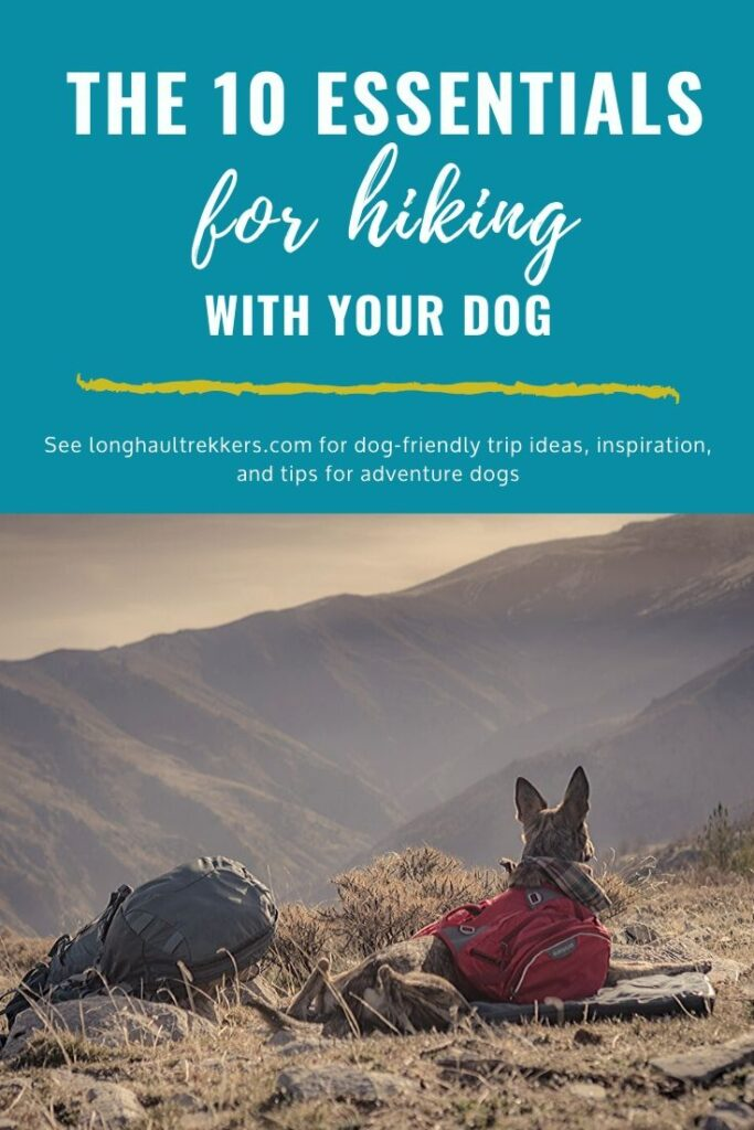 10 Essentials of Hiking with Dogs Pinterest Image