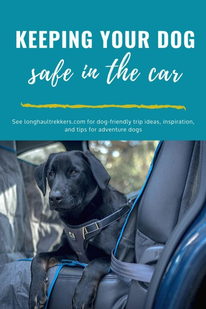 Dog Car Safety Harness Pinterest Image