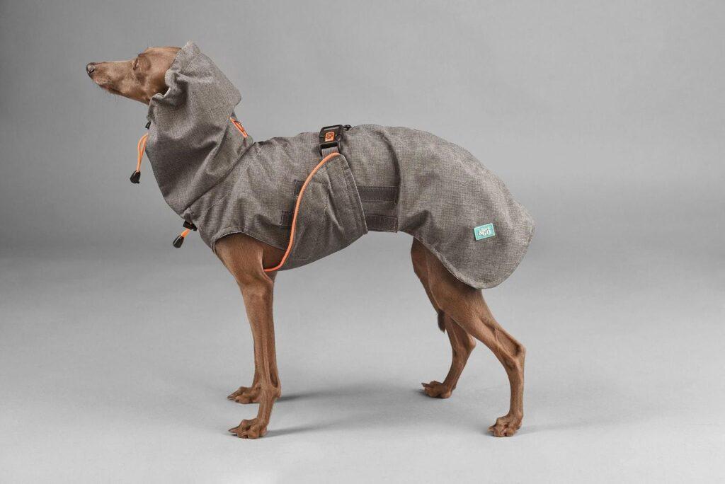 Bark & Go Raincoat on Etsy