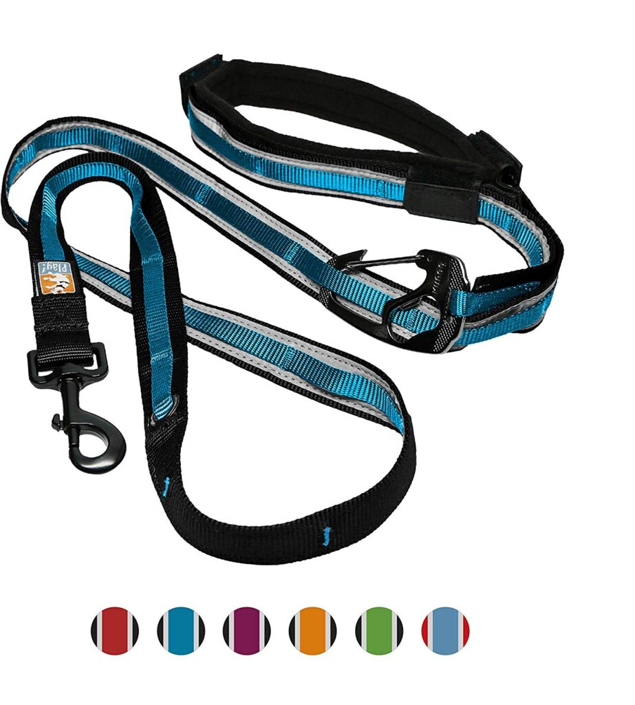 The Kurgo Quantum Leash is another great hands-free dog leash for camping