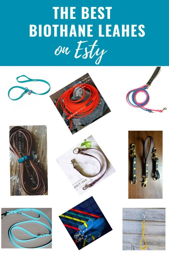 Best BioThane Leashes Found on Etsy