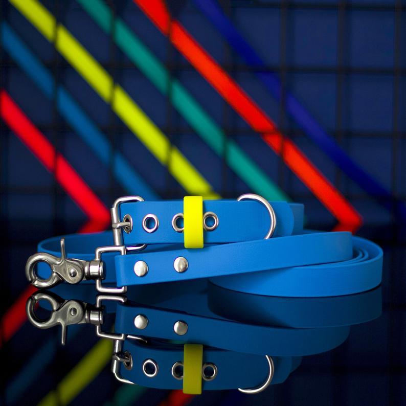 The Stately Hound Boy Dog Collar and Leash Set