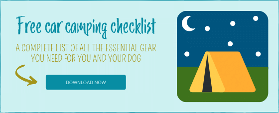 Car Camping Checklist download form.