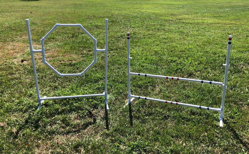 Entertain your dog in the back yard with DIY agility equipment from Zippy Dogs shop on Etsy.