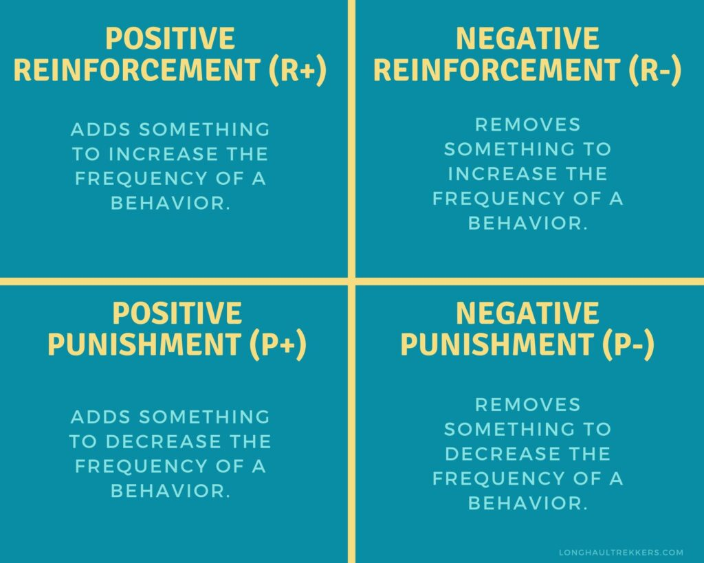 Balanced dog training incorporates all four quadrants of operant conditioning.