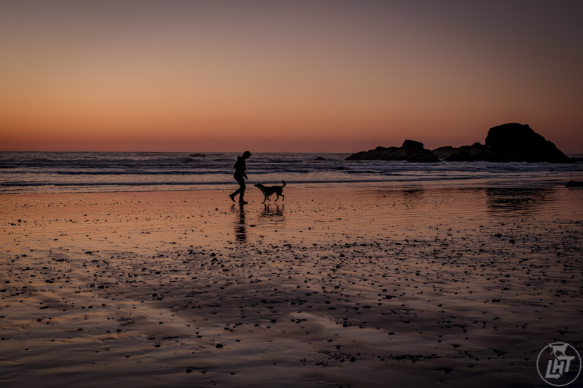Having fun on Ruby Beach at sunset on one of the dog friendly beaches in the Olympic Peninsula.