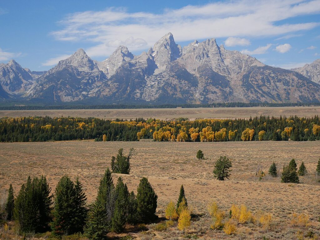 there are plenty of dog-friendly hiking trails in the nearby Gros Ventre Wilderness.