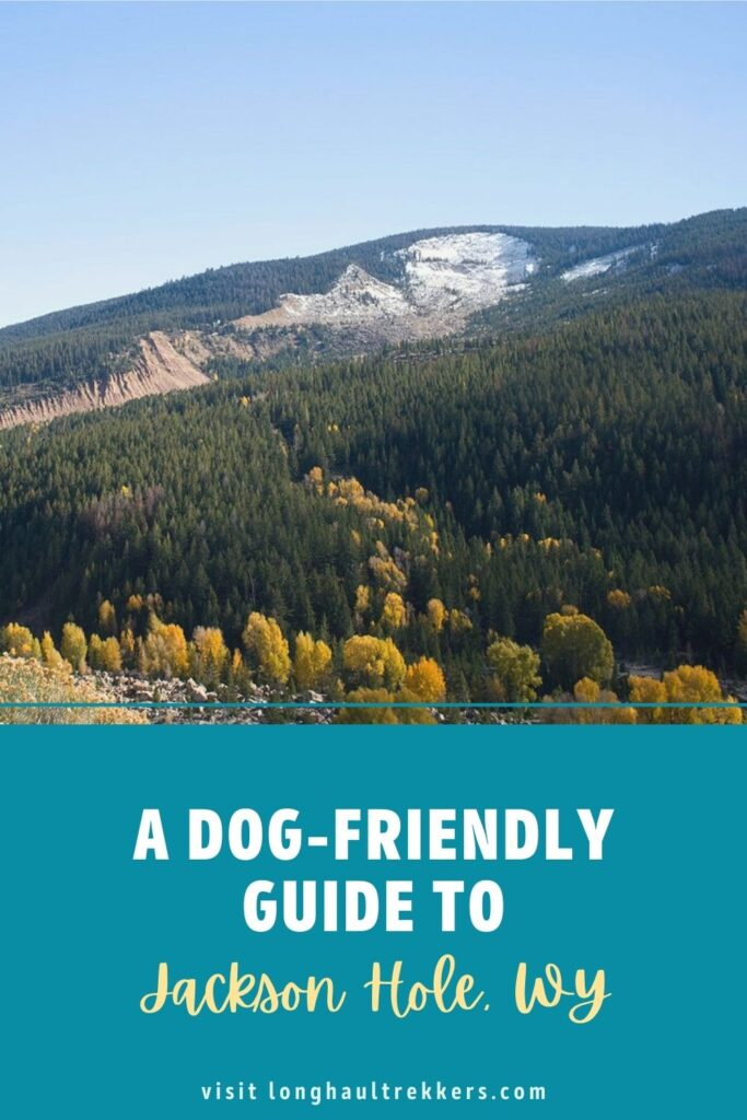 A dog-friendly guide to Jackson Hole, WY Pinterest Image