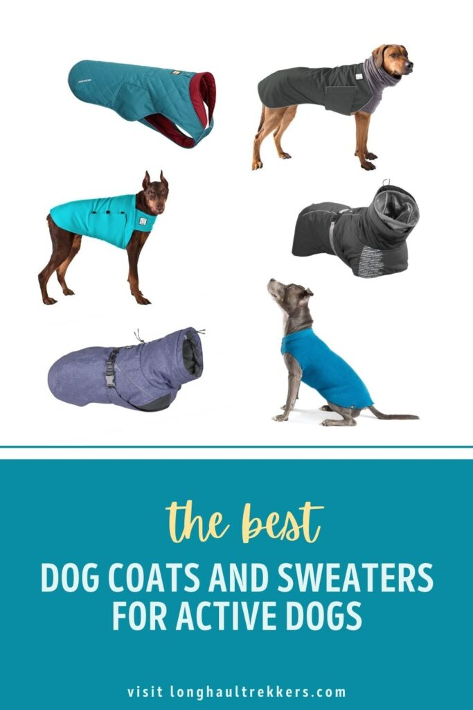 The best dog coats and sweaters for active dogs Pinterest Image