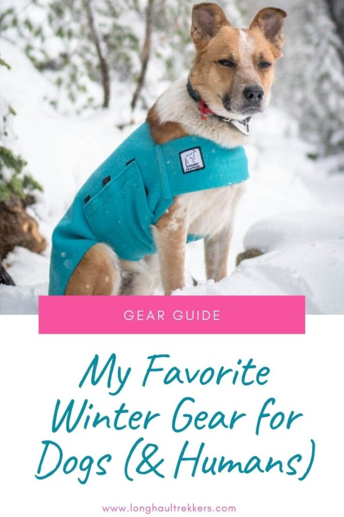 The Best Winter Gear for Dogs (& Humans) Pinterest Image