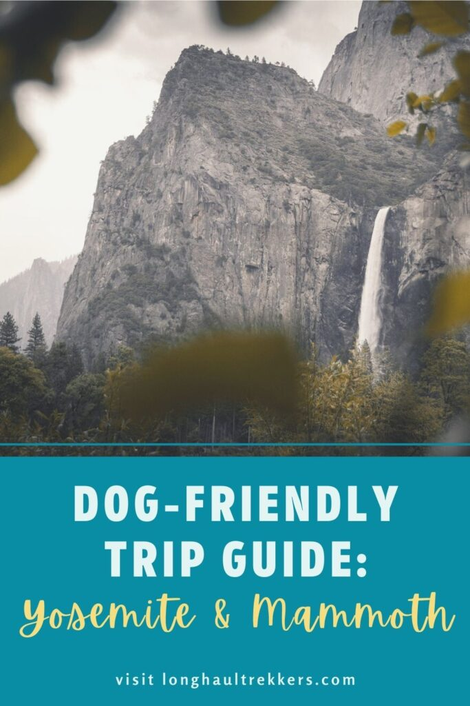 Dog Friendly Guide to Yosemite and Mammoth Pinterest Image