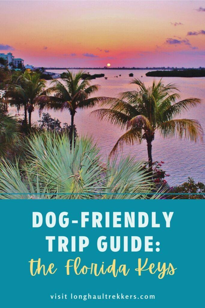 Planning a Dog-Friendly Visit to the Florida Keys Pinterest Image